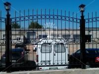 Забор с изящными пиками (Арт. 029)